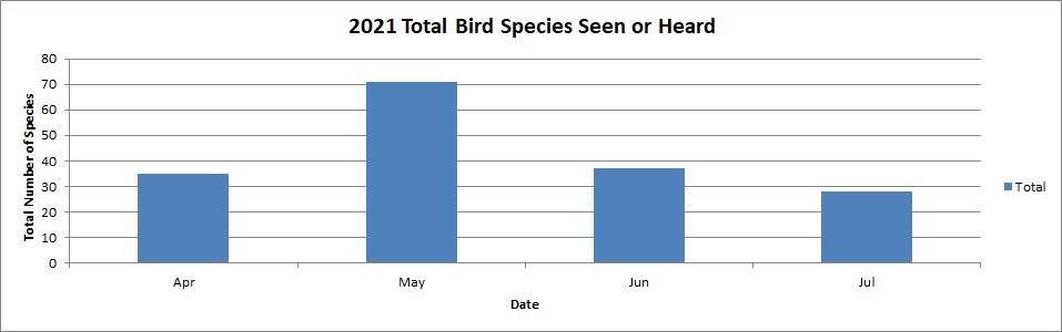 2021 total bird species seen or heard